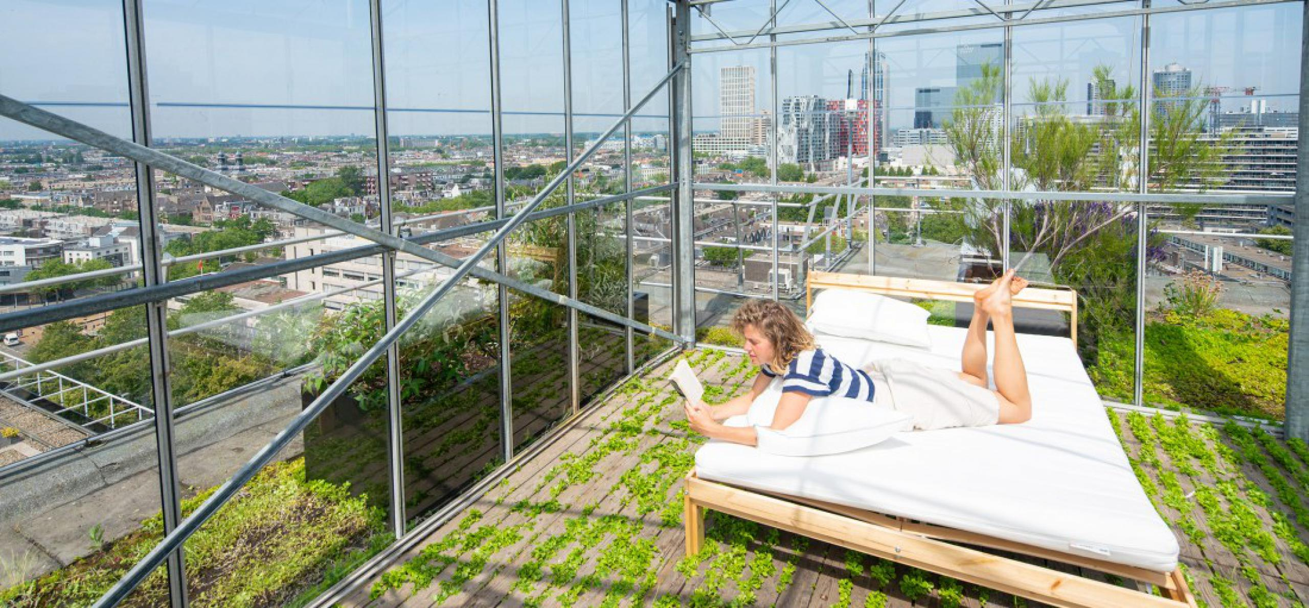 Rotterdamse Dakendagen